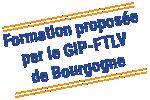 GIP FTLV