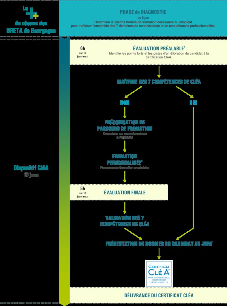 Schéma d'organisation du certificat CléA dans le réseau des GRETA de Bourgogne